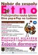 Nabór do zespołu ETNO- organizator Starostwo Powiatowe
